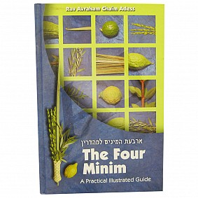 The Four Minim: A Practical Illustrated Guide