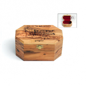 Olive Wooden Etrog Box