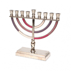 Metal Menorah - Pink